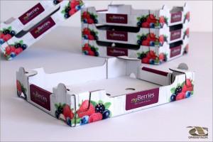 my_berries_web